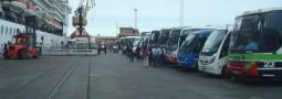 Aumentó el turismo local y los ingresos de cruceristas a la Península Valdés