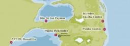 Dictarán conferencia sobre la historia de Península Valdés