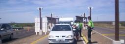 Más de 5.000 personas ingresaron a Península Valdés durante los dos feriados del mes