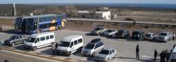Durante el fin de semana largo más de 8 mil turistas eligieron la Península Valdés