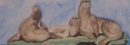 En familia dibujamos Peninsula Valdes