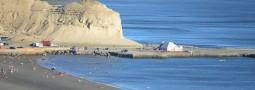 Enero: 84 mil visitantes en Península Valdés