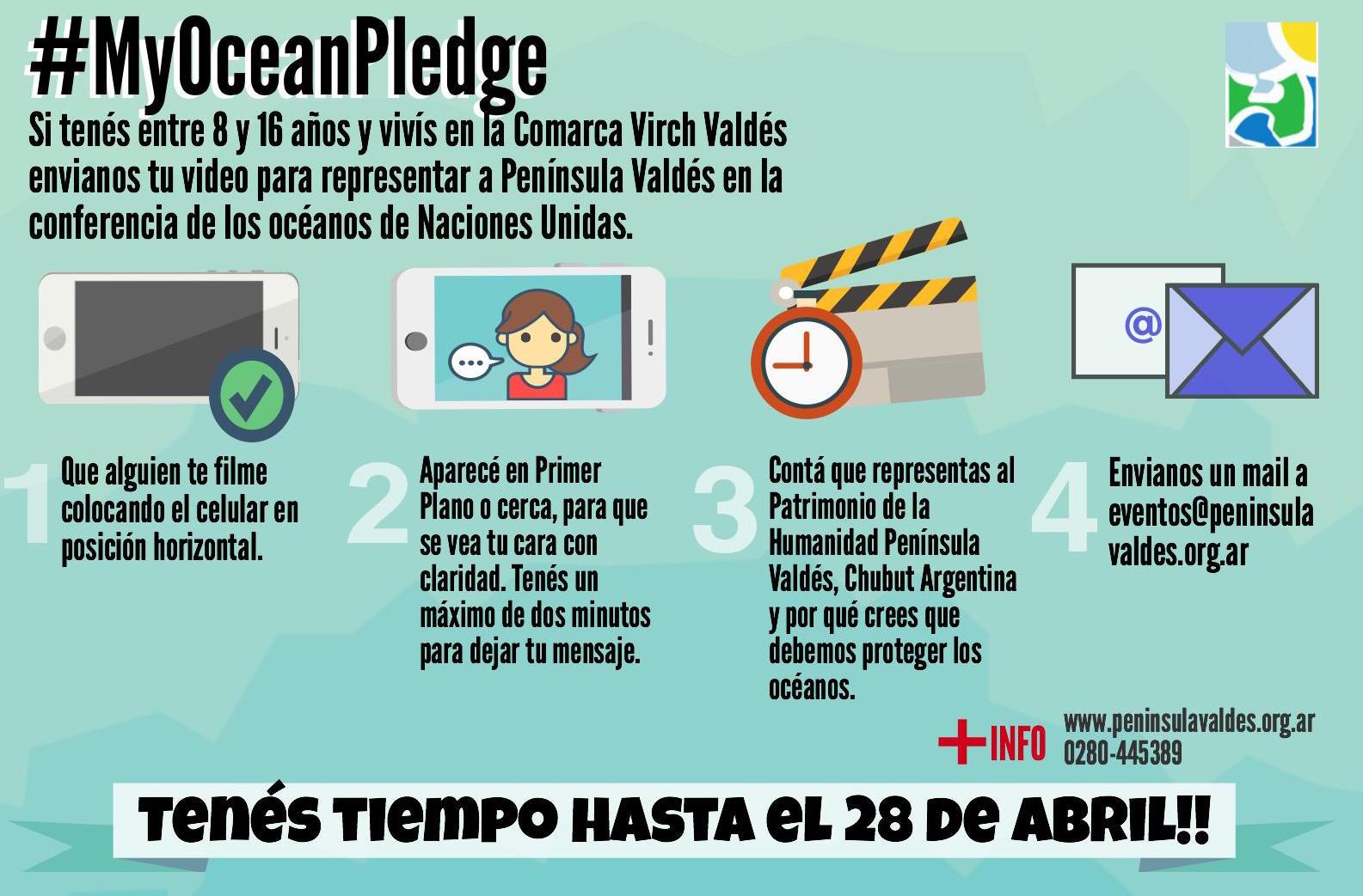 """Pueden participar chicos entre 8 y 16 años que vivan en Península Valdés y Puerto Madryn, enviando un video que se presentará el """"Día mundial de los océanos"""""""